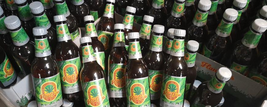 Oettinger Hanfkiss Bier testweise im Handel – auch bei Getränke Römer
