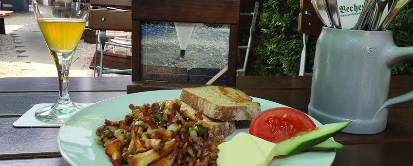 Becherhus: Täglich frische Pfifferlinge  genießen