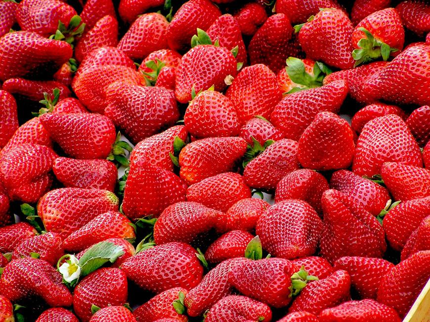 Erdbeerfest-Langenfeld-Weeger-Hof