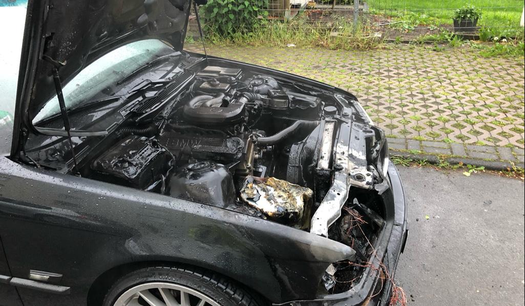 BMW-Brand-1