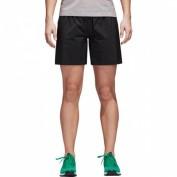 ADIDAS Damen Shorts TERREX Agravic Shorts