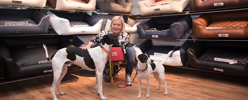 Neu in Hilden: Dogstyler bietet Hundetransportboxen, Hundezubehör und mehr