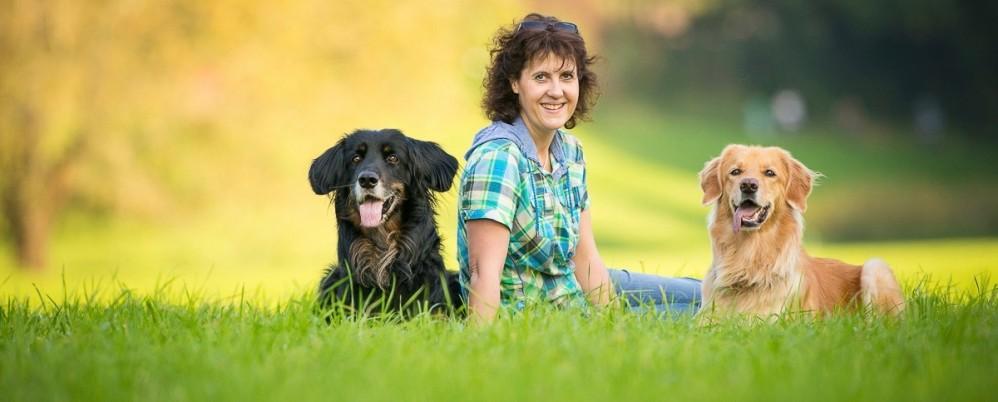 HUNDherum beweglich Langenfeld steht für die mobile Tierphysiotherapie und Krankengymnastik von Hunden, Katzen & Co.