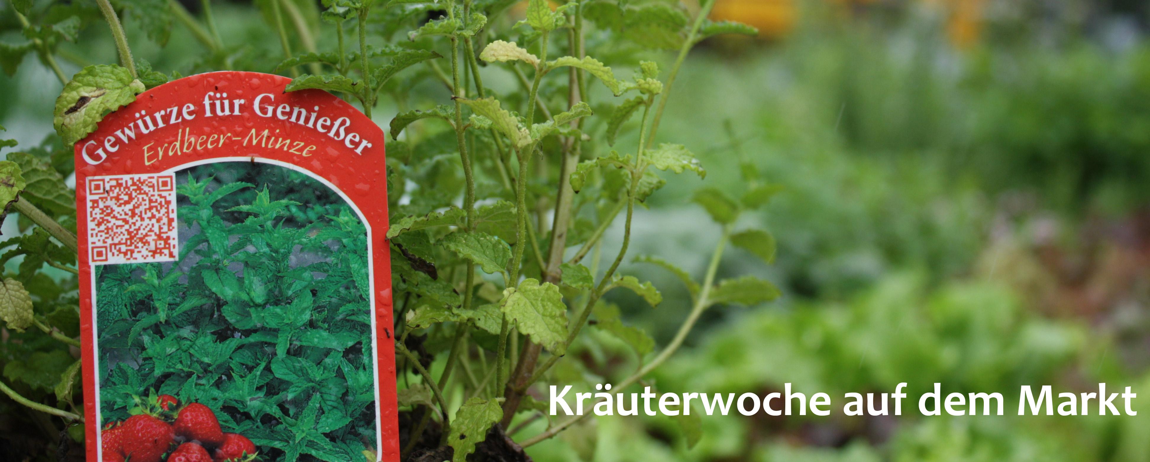 Wochenmarkt Hilden: Kräuterwoche mit tollen Rezepten