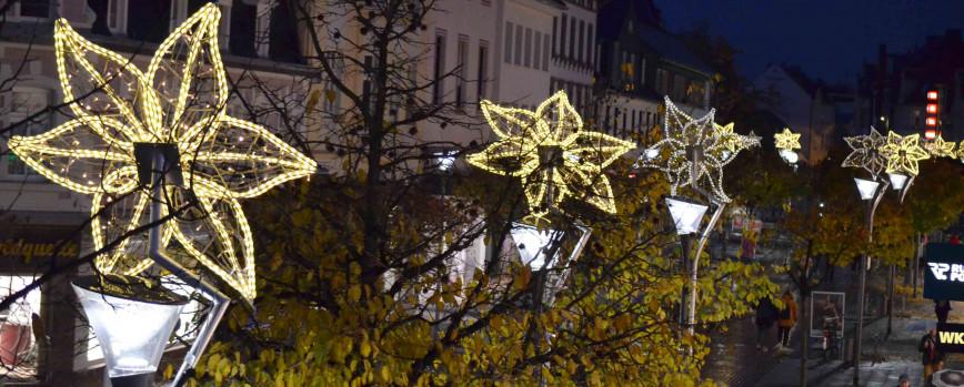 100 Weihnachtssterne leuchten abends