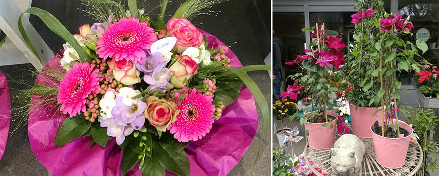 Blumen & Gärtnerei Hosse-Quatuor: So blüht der Muttertag