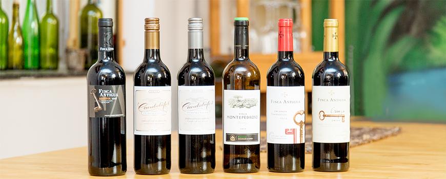 Spanischer Garten: Die neuen Weine sind da