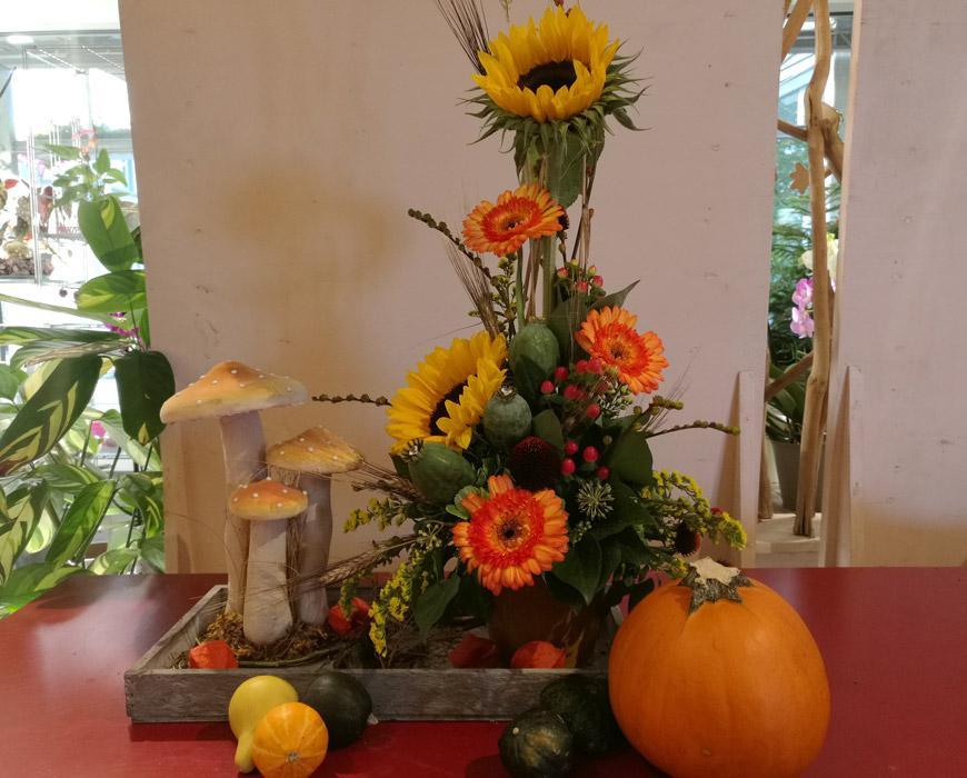 gaertnerei-floristik-blumenladen-solingen-Hosse-Breuer-Herbstpflanzen-3