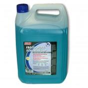 Scheibenwaschfrostschutz 5 Liter Konzentrat bis -60 Grad TE